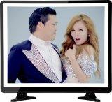 Double glace couleur TV d'affichage à cristaux liquides du grand dos DEL de 17 pouces