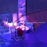 Fondo subacqueo impermeabile a pile chiaro sommergibile del vaso di illuminazione dello stagno della festa nuziale della piscina di RGB 10 LED