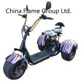 1000W Trike eléctrico con 60V/20ah