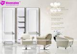 Популярный стул салона парикмахера шампуня мебели салона высокого качества (P2003)