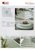 Grande pietra facente un passo di modo del granito della pietra moderna della scala