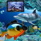 Câmera subaquática da pesca da tela da cor da alta qualidade