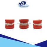 Prodotto ortodontico di iso di Niti della molla elicoidale della FDA aperta del Ce