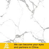 Застекленная Polished плитка Carrara Calacatta и Statuario камня фарфора