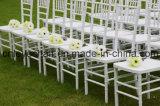 결혼식 임대 가구 의자