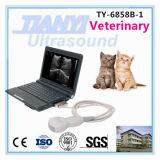 Bon système de diagnostic d'ultrason d'ordinateur portatif des prix avec le logiciel humain et animal