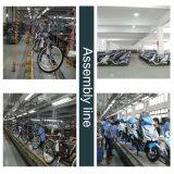 Grüne Energien-Pedal unterstützte grosser Falz-elektrisches Fahrrad für Erwachsene
