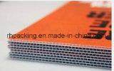 обработанные 1220*2440mm*4mmcorona делают водостотьким/многоразовая гофрированная PP белизна пластичного листа листа/PP Coroplast твердая опаковая для Signage печатание