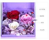 인공적인 보존한 자연적인 로즈 의 꽃 결혼식 훈장