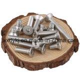 Edelstahl-Maschinen-Schrauben-angesenkte Haupthexagon-Kontaktbuchse-Kopfschrauben-Fabrik von China BS 2470