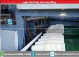 Maquinaria de formação Thermo do copo com empilhador