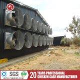 Equipo de acero de las aves de corral de la jaula del pollo Q235 para la capa o la parrilla