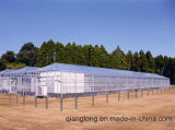 Mucchio di saldatura galvanizzato della vite per solare senza flangia (N76-2500-T3)