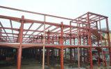 Het geprefabriceerde RuimteMetaal van het Frame wierp de Bouw van de Fabriek van de Structuur van het Staal af