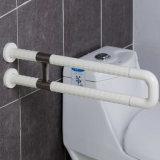 Het Roestvrij staal van het toilet en van de Badkamers en de Nylon u-Vorm Staven van de Greep