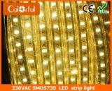 Luz de tira barata de la decoración el 120LEDs/M AC220V SMD5730 LED