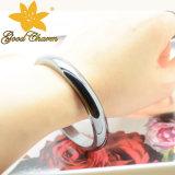 Htbl-001b 10mm Form-elegantes magnetisches Hämatit-Armband