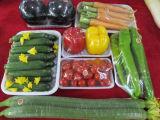 Rectángulo disponible de encargo al por mayor de los alimentos de preparación rápida para el mercado (bandeja plástica)