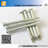 45 # Acero Liso Flute Shank Cemento Galvenized Concreto Clavos