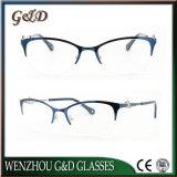 고품질 대중적인 금속 유리 Eyewear 안경알 광학 프레임 Tb3866
