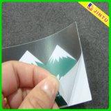 Modificar las etiquetas cortadas con tintas vinilo adhesivo de la etiqueta autoadhesiva para requisitos particulares