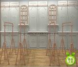 Diseño del departamento de la ropa de las señoras de la primera tarifa con la decoración de la visualización del soporte del estante del metal