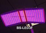 Машина терапией машины СИД красотки PDT светлая