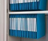 Boa qualidade e ficheiro de aço Rustproof da porta do obturador do rolo do preço
