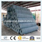 China-Lieferant die Stein-Rahmen-Netze/galvanisierte sechseckige der Maschendraht