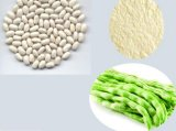 白い腎臓豆のエキス(Phaseolamin)