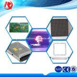 32*16 punteggia il modulo esterno della visualizzazione di LED P10
