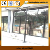Luz de rua solar da alta qualidade com painel solar (11W~30W)