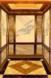 [فوجيزي] مسافر مصعد مع [إن81] شهادة [فجك8000-20]