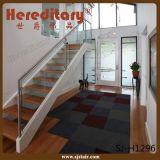 Edelstahl-Glasbalustrade für Balkon/Glasgeländer (SJ-S075)