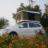 [4إكس4] [أفّ-روأد] [فيبرغلسّ] سقف أعلى خيمة [كمبر تريلر] [كمب تنت] يستعصي قشرة قذيفة أعلى سقف خيمة