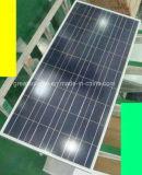 80W Poly Solar Panel avec le prix bas et le Highquality