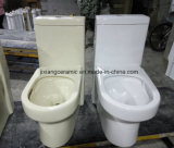 Toilette en céramique monopièce ene ivoire Siphonic superbe