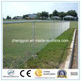 Rete fissa di collegamento Chain di alta qualità del rifornimento della Cina/rete fissa del giardino