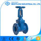 Válvula de porta flangeada assentada resiliente do ferro BS5163 Ductile