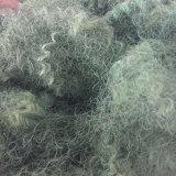 Fibra de grampo de poliéster verde, PSF colorido, Garrafas para animais de estimação Reciclar grampo de poliéster
