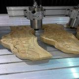 деревянное цена машины Woodworking CNC маршрутизатора CNC 3D с таблицей вакуума (DW1325)