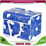 Il congelatore riutilizzabile non tessuto dei pp insacca (KLY-CB-0038)