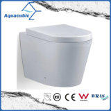 Wall Hung Washdown Dual Flush Ceramic Toilet (AA5257B)
