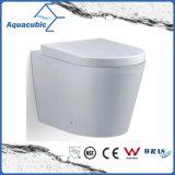 Wall Hung baldeo de doble descarga del inodoro de cerámica (AA5257B)