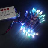 Stringa impermeabile del pixel LED di natale di Ws2811 Digitahi RGB