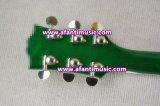 Полый тип тела/гитара частей золота/Afanti электрическая (AHY-663)