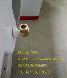 Пол - установленный цельный туалет ванной комнаты в санитарными Bidet совмещенном изделиями