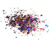 최신 못 예술 불꽃 반짝임 먼지 다채로운 미용 제품 (D91)