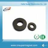 Sintered Hard (32-18*6mm) Ferrite Magnet for Speaker