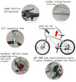 La bicicleta eléctrica ocultada 2015 36V más nueva A6 de la montaña de la batería